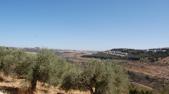 Update On Separation Barrier Between Israel and Palestine, Cremisan Valley